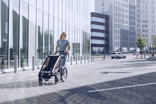 thule chariot lite agave 2021