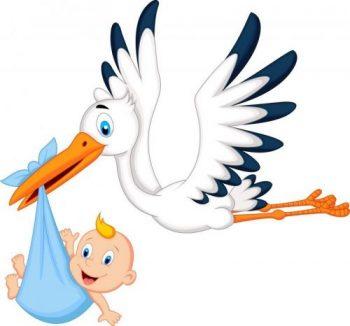 Baby och stork Åre Barnvagnar